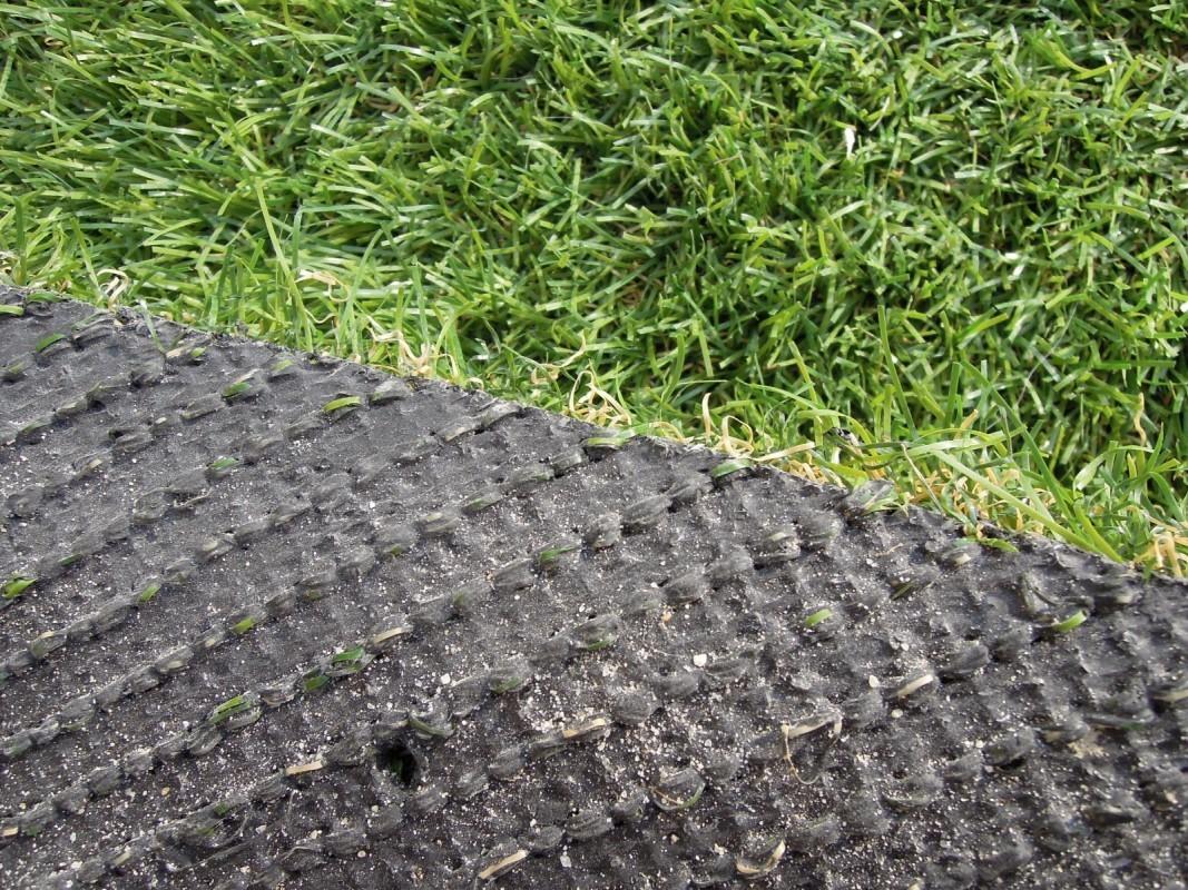 Detail - spodná časť trávy
